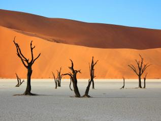 EIGHT REASONS TO VISITNAMIBIA